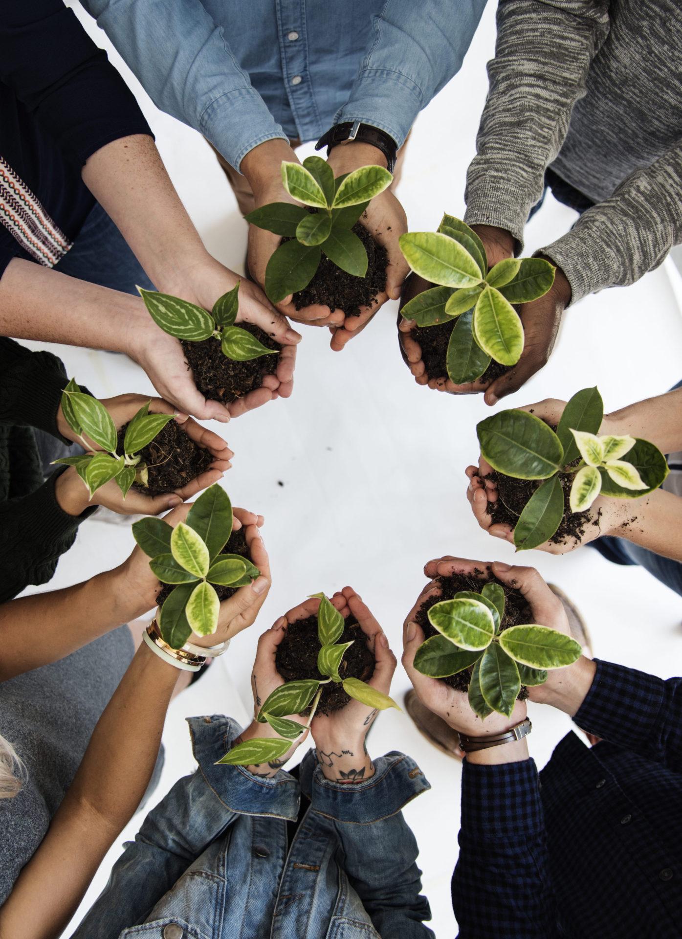https://smart-green.pl/wp-content/uploads/2019/05/AdobeStock_143396754-1-e1558611472928.jpeg
