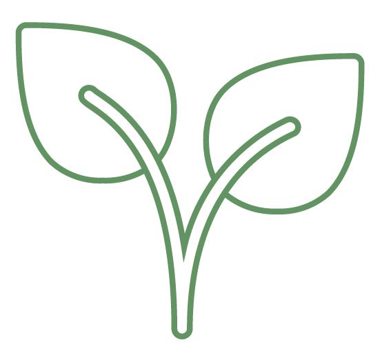 http://smart-green.pl/wp-content/uploads/2019/05/pielęgnacja.png