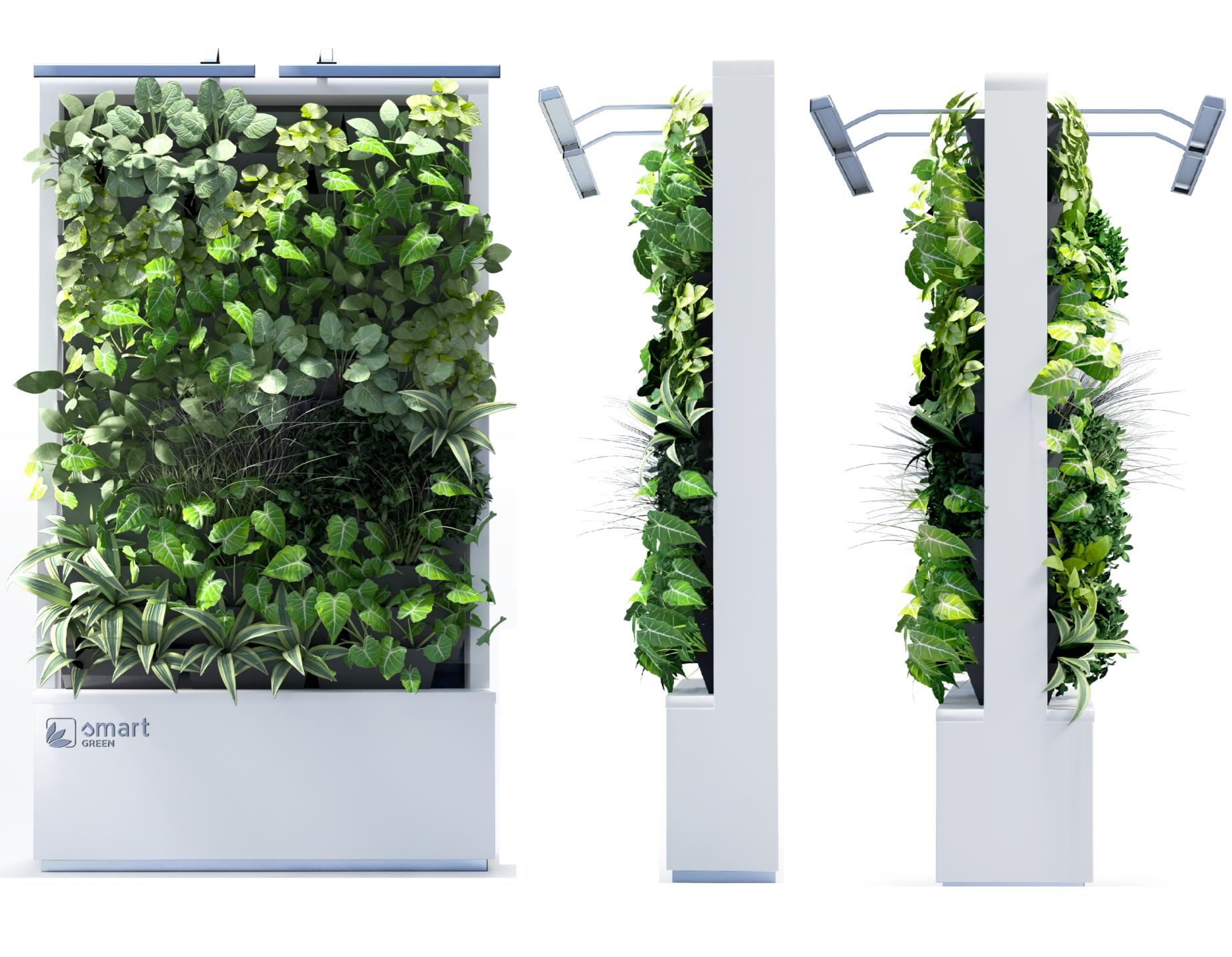 Mobilna ściana zieleni